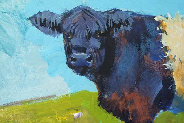 Painting - Belted Galloway Cow Head by Mike Jory