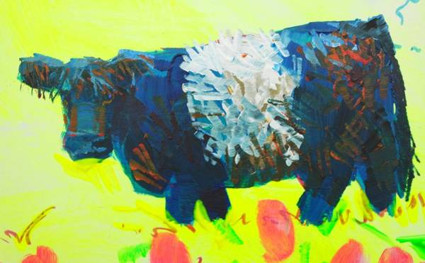 Painting - Belted Galloway Cow Looking At You by Mike Jory