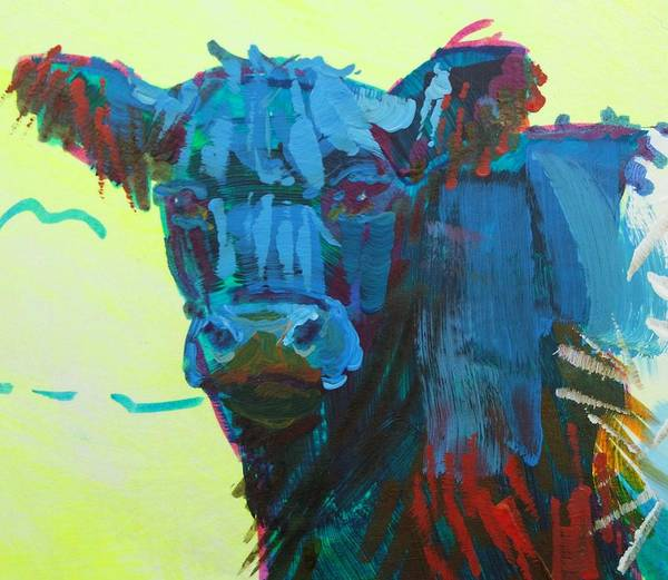 Painting - Belted Galloway Cow On Dartmoor by Mike Jory