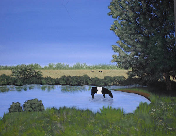 Wall Art - Painting - Belted Galloway In Pond by Candace Shockley