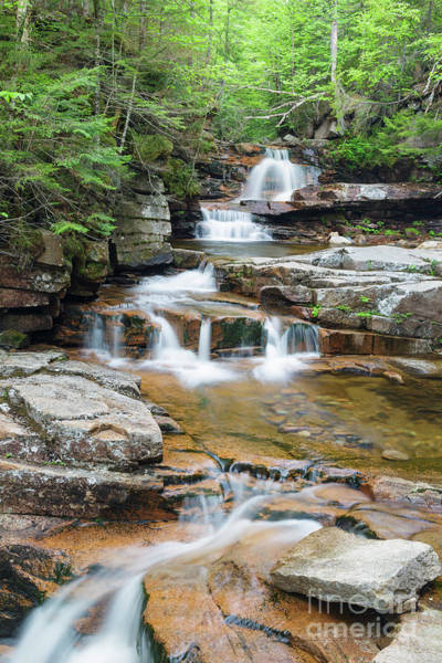 Photograph - Bemis Brook Falls - Harts Location New Hampshire by Erin Paul Donovan