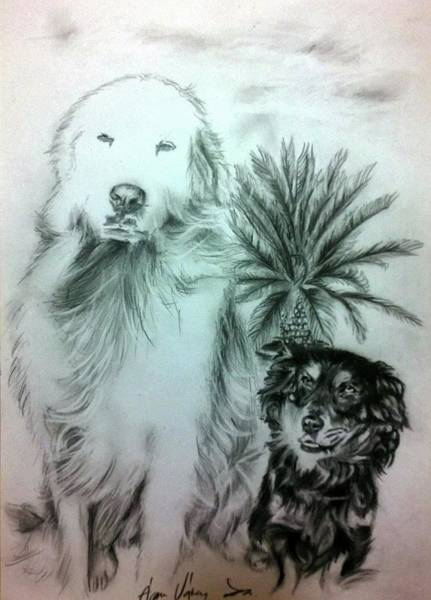Wall Art - Drawing - Ben And Carlos by Agnes V