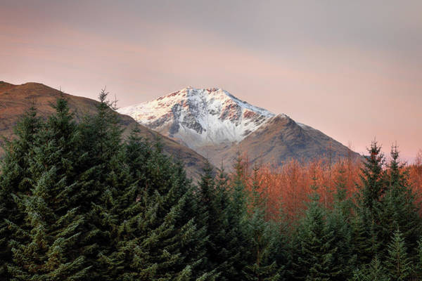 Photograph - Ben Lui Sunrise by Grant Glendinning