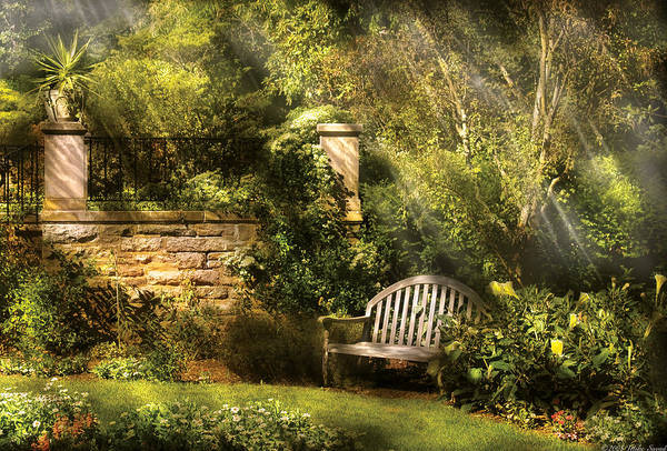 Photograph - Bench - Edens Edge  by Mike Savad