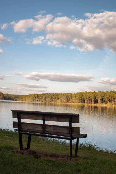 Photograph - Bench By The Lake by Mechala Matthews