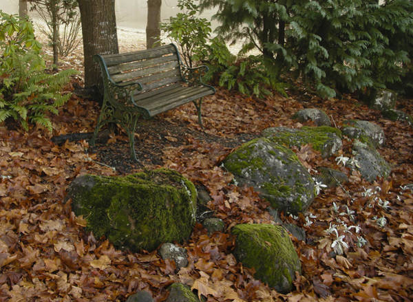 Photograph - Bench In Fall by Jean Noren