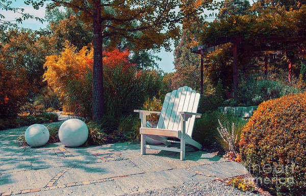 Photograph - bench in German park by Ariadna De Raadt