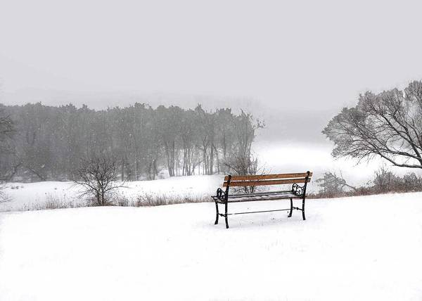 Photograph - Bench In Snow by Coleman Mattingly