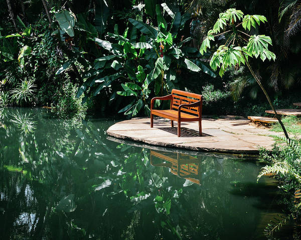 Photograph - Bench In Tropical Florest by Alexandre Rotenberg