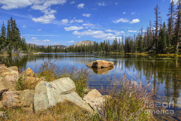 Photograph - Bench Lake by Spencer Baugh