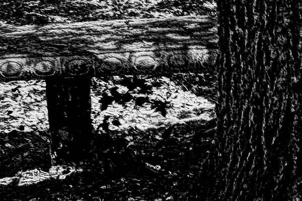 Bench Loves Tree Art Print