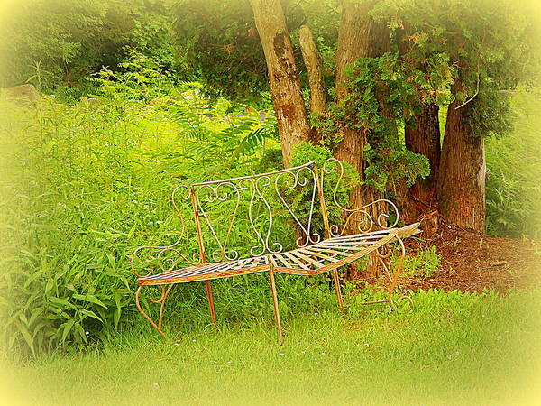 Vintage Conway Photograph - Benched by Karen Cook