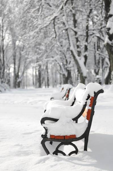 Wall Art - Photograph - Benches In The Snow by Jaroslaw Grudzinski