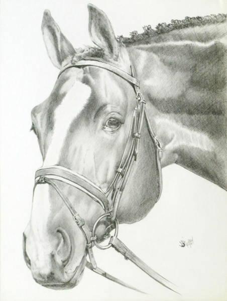 Drawing - Benign by Barbara Keith