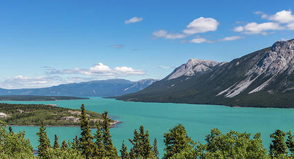 Photograph - Tagish Lake by Ed Clark