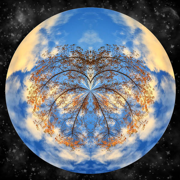 Photograph - Bent Branches Planet by Wes and Dotty Weber