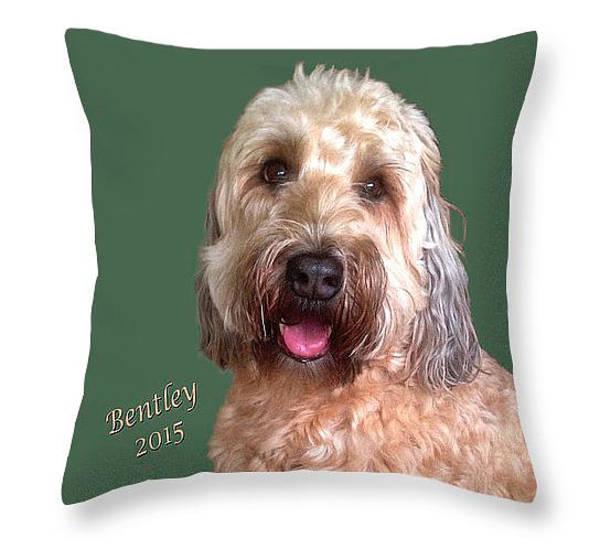 Painting - Bentley Pillow by Karen Zuk Rosenblatt