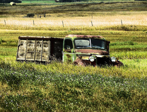 Relics Photograph - Bereft In A Field by Jeff Swan