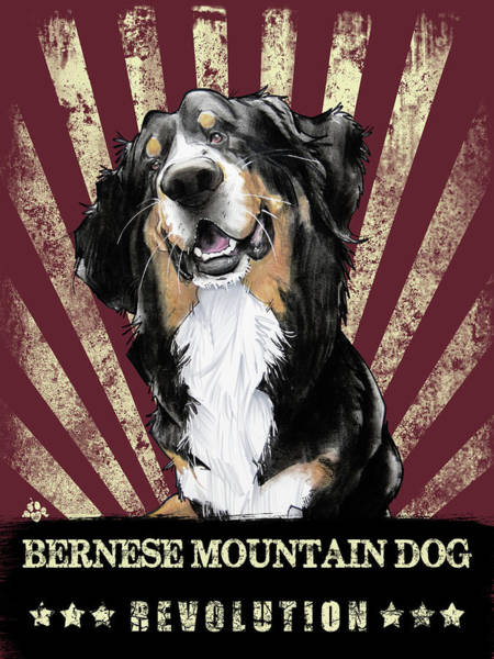Drawing - Bernese Mountain Dog Revolution by John LaFree