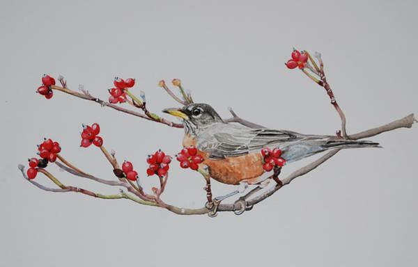 Painting - Berry Abdundant  by Sonja Jones