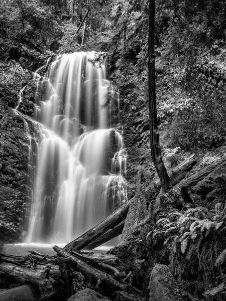 Wall Art - Photograph - Berry Creek Falls by Steve Spiliotopoulos