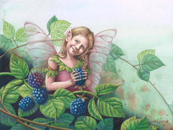 Drawing - Blackberry Fairie by Joan Garcia