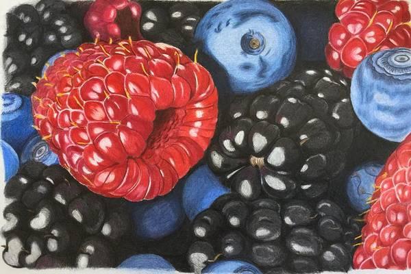 Juicy Drawing - Berry Jumble by Erika Clarke