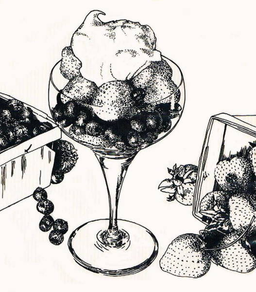 Drawing - Berry's by Barbara Keith