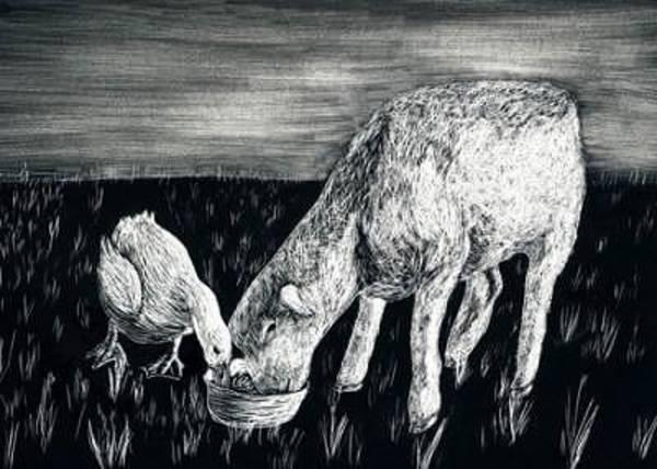 White Goose Drawing - Best Friends by Elizabeth Jones