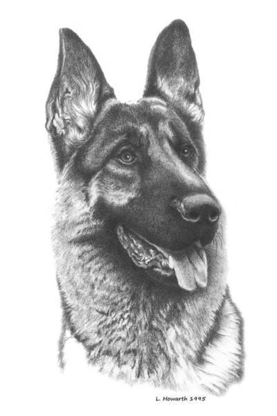 German Shepherd Drawing - Best In Show by Louise Howarth