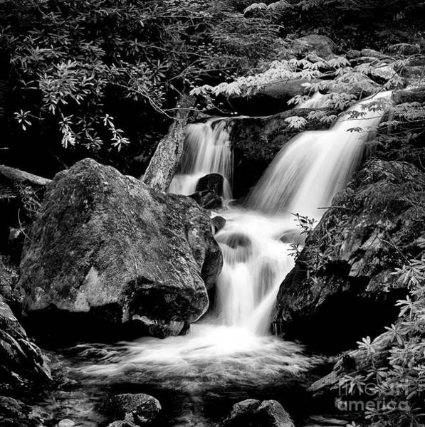 Wall Art - Photograph - Best Of The Smokies by Paul W Faust -  Impressions of Light