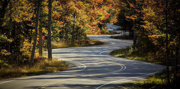 Photograph - Best Road Ever by Terry Ann Morris