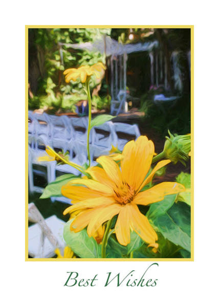 Photograph - Best Wish On Your Wedding by Ginger Wakem