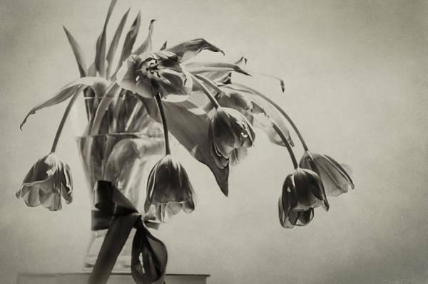 Greyscale Photograph - Bestill My Heart  by Maggie Terlecki