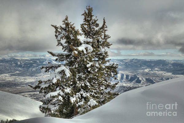 Photograph - Between Mountains And Snow Drifts by Adam Jewell