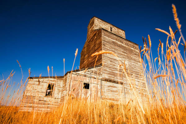 Grain Elevator Photograph - Between The Blades Of Grass by Todd Klassy