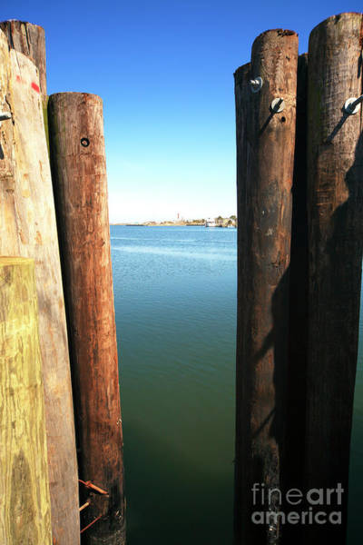 Photograph - Between The Dock Poles At Long Beach Island by John Rizzuto