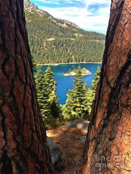 Camping Wall Art - Photograph - Between The Pines by Krissy Katsimbras
