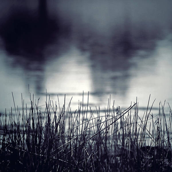 Photograph - Between The Waters by Trish Mistric
