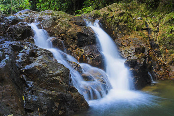 St. Lucia Photograph - Bexon Waterfall In Color- St Lucia  by Chester Williams