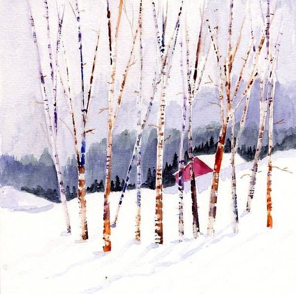 Beyond The Birch Thicket Art Print