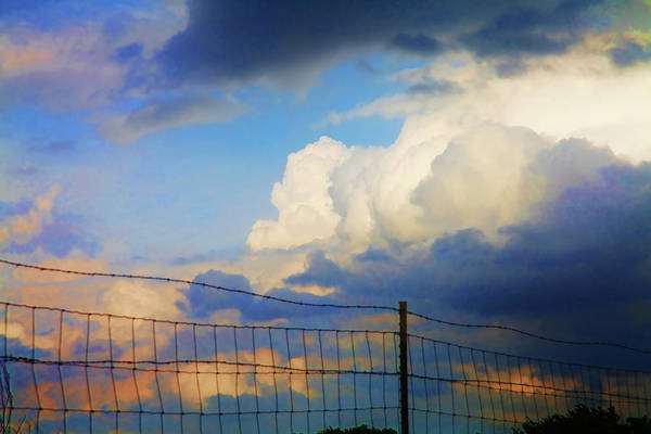 Wall Art - Photograph - Beyond The Fence by Toni Hopper