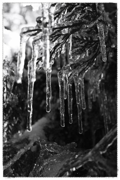Photograph - Beyond The Ice by Mario MJ Perron