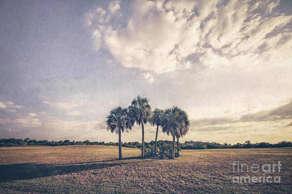 South Florida Wall Art - Photograph - Beyond The Sundial by Evelina Kremsdorf