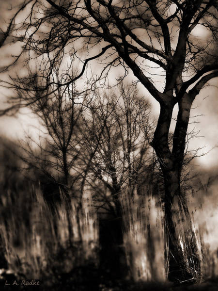 Photograph - Beyond Twilight by Lauren Radke