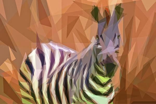 Photograph - Bezeled Zebra by Alice Gipson