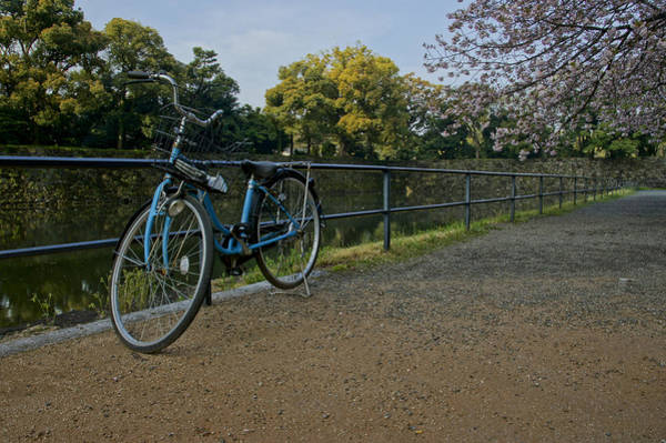 Biota Photograph - Bicycle And Tokyo Imperial Palace by Brian Kamprath