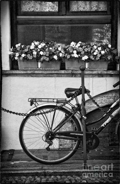 Photograph - Bicycle With Flowers by Silvia Ganora