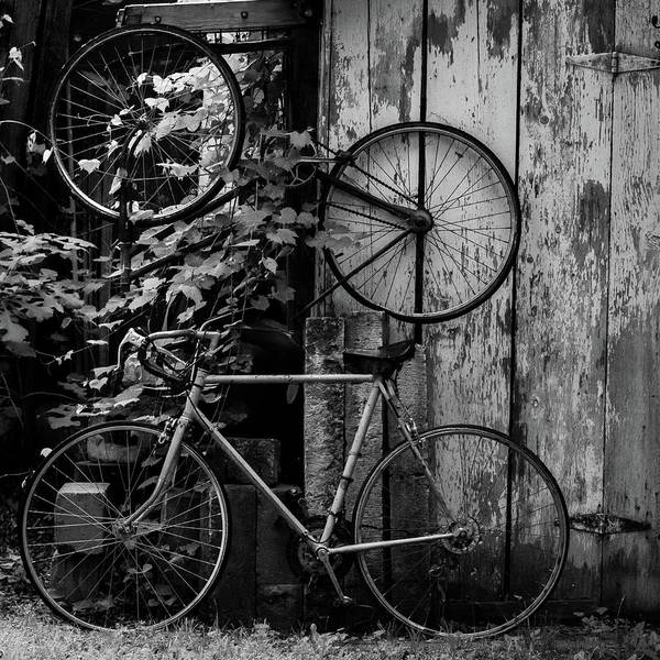 Photograph - Bicycles by Jay Stockhaus