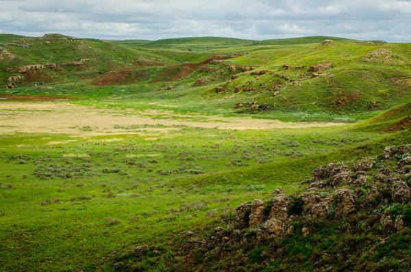 Photograph - Big Basin by Jeff Phillippi